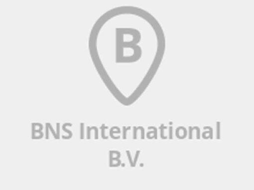 BNS International
